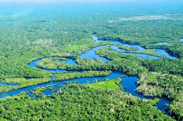 Atlantis Hydroponics, amazon rain forest, ancient gardening secrets