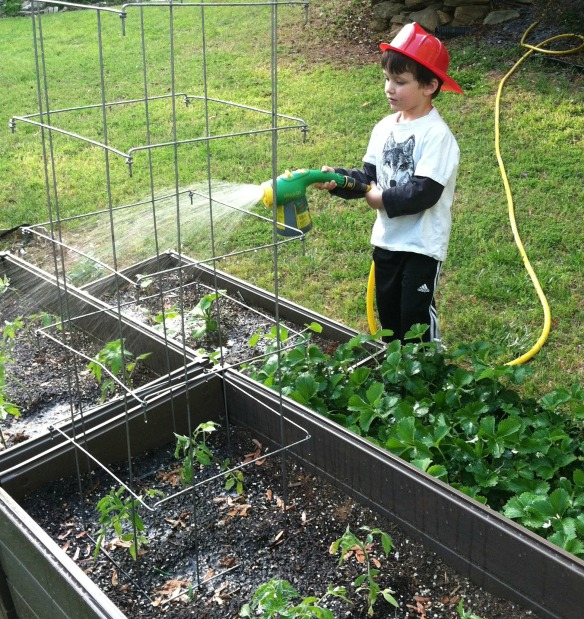 Growing in a Raised Bed is So Easy Even a Child Can Do It!