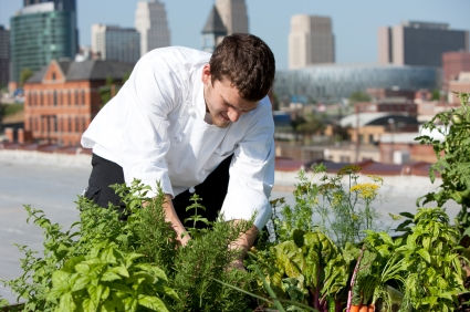 This Roof Top Herb Garden Relies on Rain Water for Irrigation
